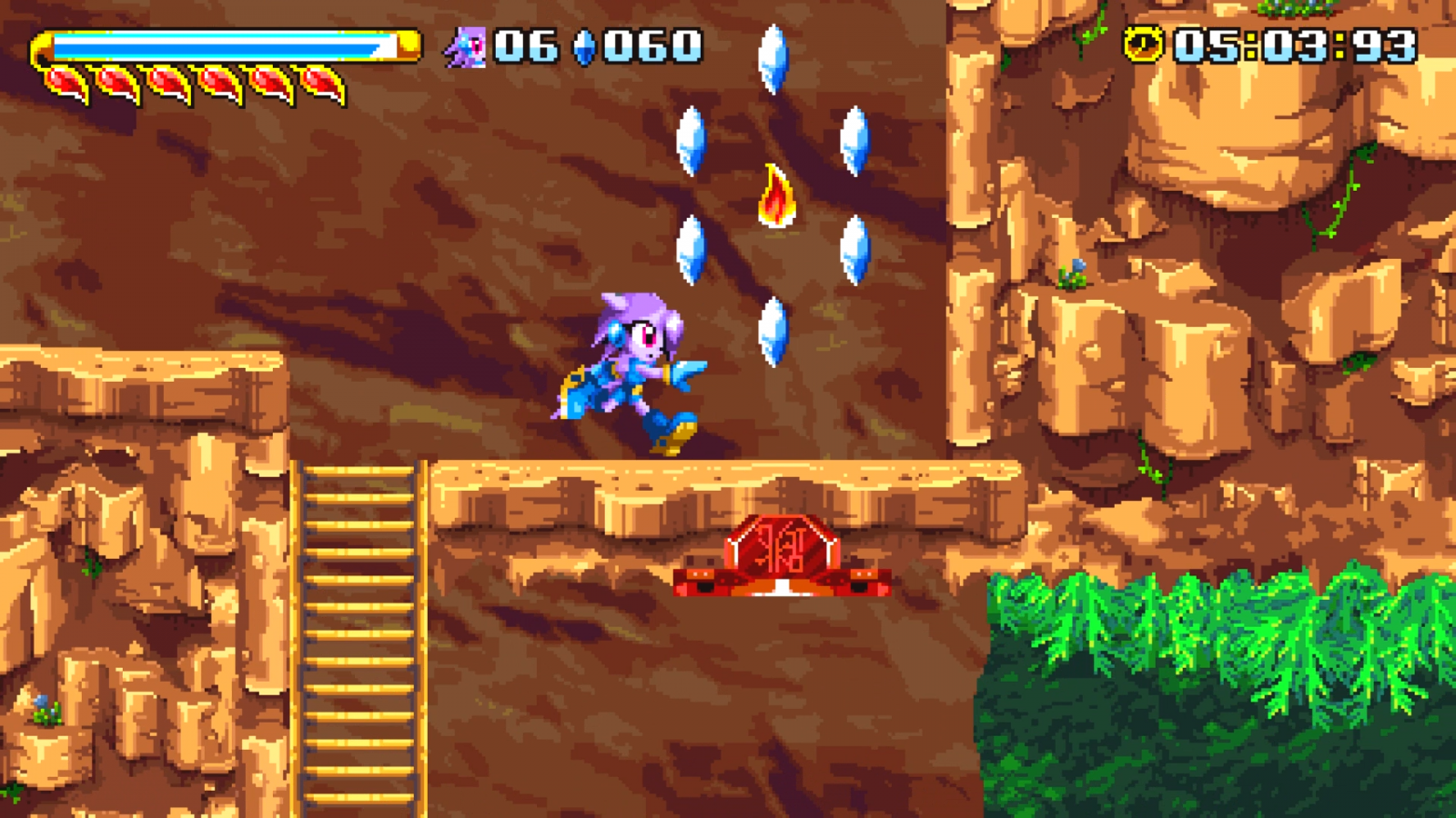 Freedom Planet coming to Switch this August