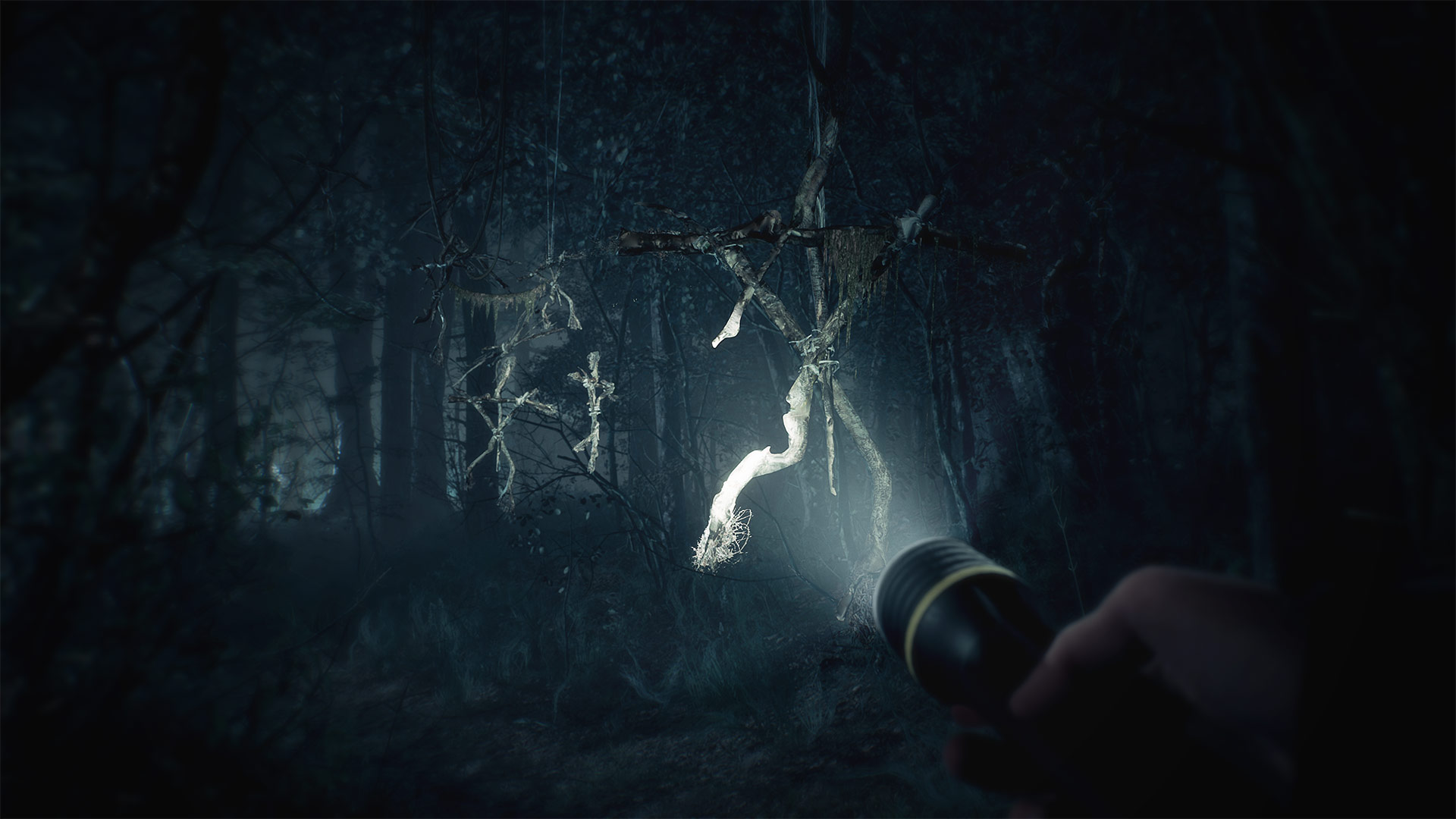 Things get seriously weird in the latest Blair Witch trailer