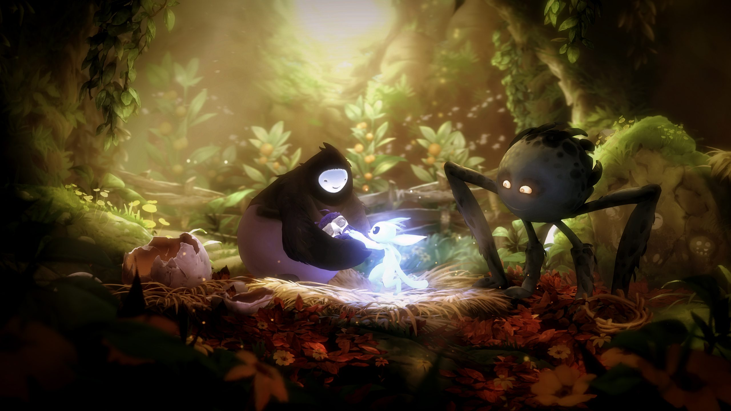5 Reasons To Be Excited For The New Ori